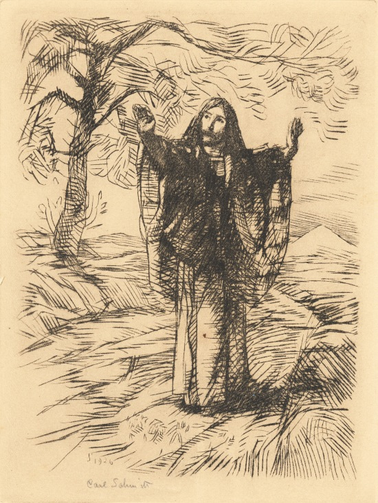 Christ preaching - etching - CROPPED